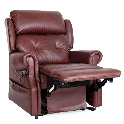 Oakworth Dual motor riser recliner leather mobility chair