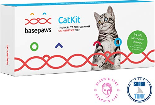 Basepaws Cat DNA Test Kit | Breed + Health Report & Wildcat...