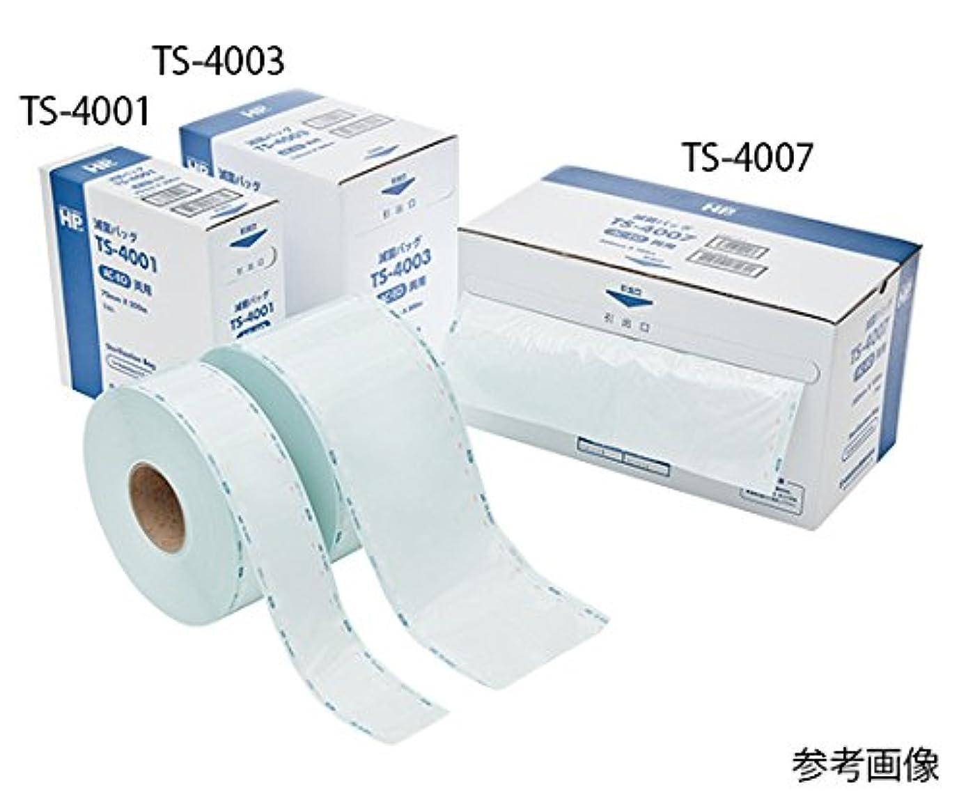 関係ぼろスペル日油技研工業61-0185-75AC/EOガス滅菌バッグTS-4003