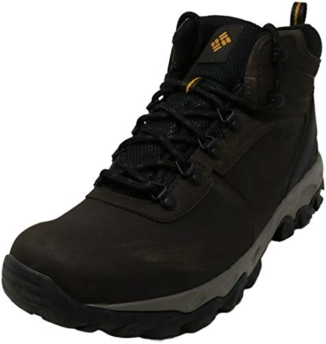 Columbia mens Newton Ridge Plus Ii Waterproof Hiking Boot, Cordovan/Squash, 11 US