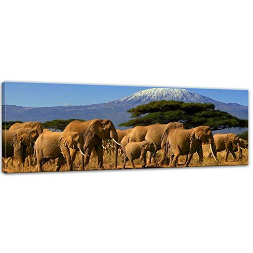Bilderdepot24 Bild auf Leinwand | Elefanten am Kilimandscharo in 90x30 cm als Panorama Wandbild | Wand-deko Dekoration Wohnung modern Bilder | 202301