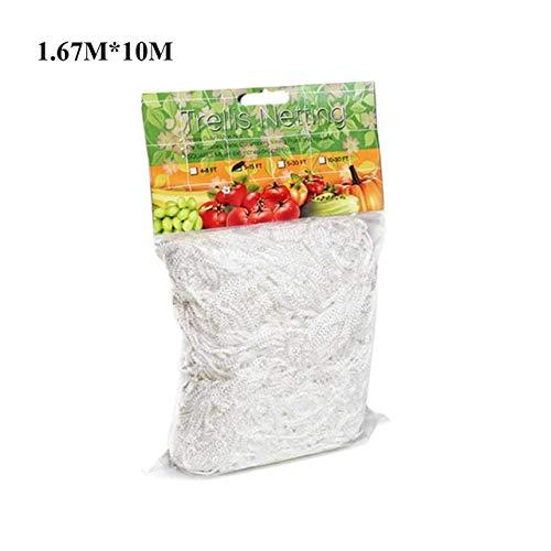 MINGMIN-DZ Dauerhaft Pflanze Klettern Netz-Ineinander greifen Loofah Netz for Morning Glory Vine Blumen Garten Pflanzen Kletternetz Gurke Rebe Halter wachsen (Color : 1.67x10M)