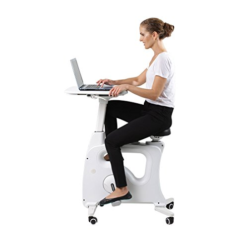Flexispot Office Standing Desk Exercise Bike