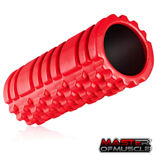 Foam Roller for Sport Massage Therapy - Best Massage Tool for Deep Tissue Massage, Myofascial Release, Muscle Pain and Stiffness Relief - with *Free* Ebook Instructions (13 inch) (Hollow Core)