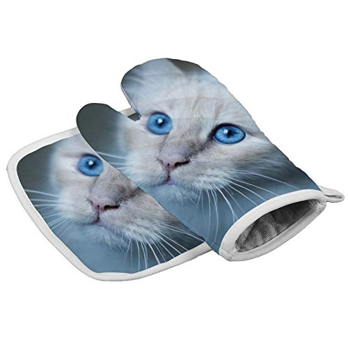 MayBlosom Oven Mitts Pretty White Cat Kitchen Oven Gloves and Pot Holders Set Heat Resistant Microwave Oven Mitt for BBQ Cooking Baking Grilling