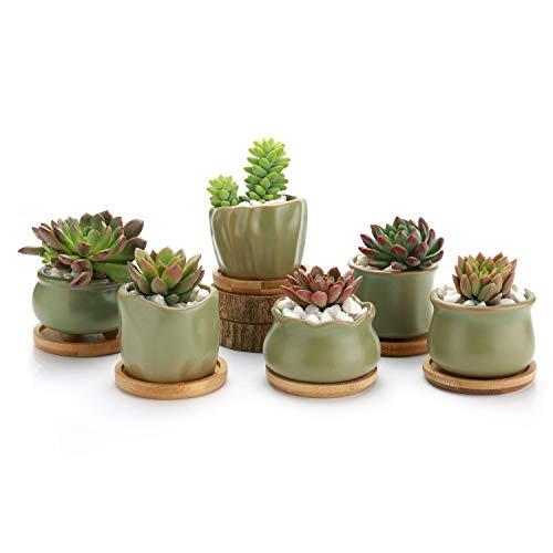 T4U Keramik Sukkulenten Topf mit Bambusschale 6er-Set, Klein Innen Blumentopf Übertopf Grün Rund für Zimmerpflanzen Kakteen Moos Innenbereich (Pflanze Nicht Enthalten)