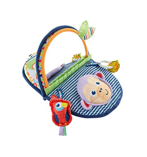 Fisher-Price Monkey Mirror, New-born Tummy Time and Sit Sensory Toy with...