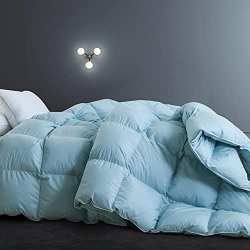 SNOWMAN Goose Down Comforter All-Season Duvet Insert,Queen Comforter...