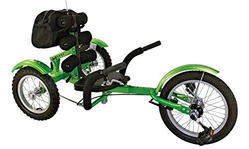 Holzspielerei Liegerad CartRider für Kinder/Go-Kart/Trike günstig / 4 bis 8 Jahre/Max. 75 kg (Grün)