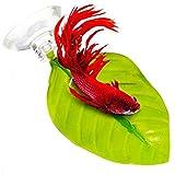 POPETPOP 2 Pack Betta Leaf Planta de Hamaca Almohadilla de Hoja Peces de desove Piscicultura En Reposo Bed-Beta Accesorio para pez