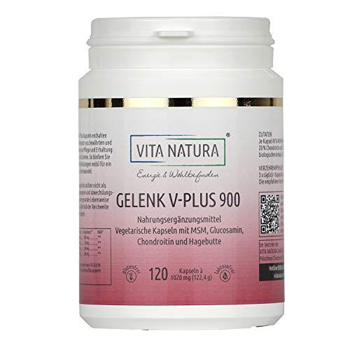 Vita Natura Gelenk V-Plus 900 mg Vegikapseln, 1er Pack (1 x 120 Stk.)
