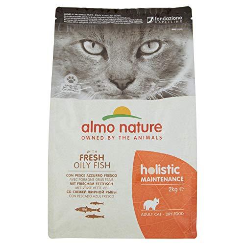almo nature Pienso para Gatos Adultos Holistic Dry Pescado (2 kg). Comida para Gatos Grandes Natural. Alimento Balanceado Seco para Felinos Alto en Proteínas.