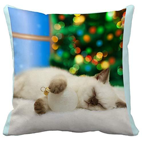 Kussenhoes schattige kat digitale print decoratieve kussenhoes woonkamer sofakussen kussenslopen sierkussenslopen 45x45 cm fotografie-rekwisiet-achtergrond 45x45cm C