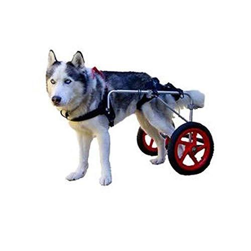 FNTDog Hund Rollstuhl,Hunderollstuhl Hunderollwagen Gehhilfe, L(22-45 Kg), frei verstellbare Größe