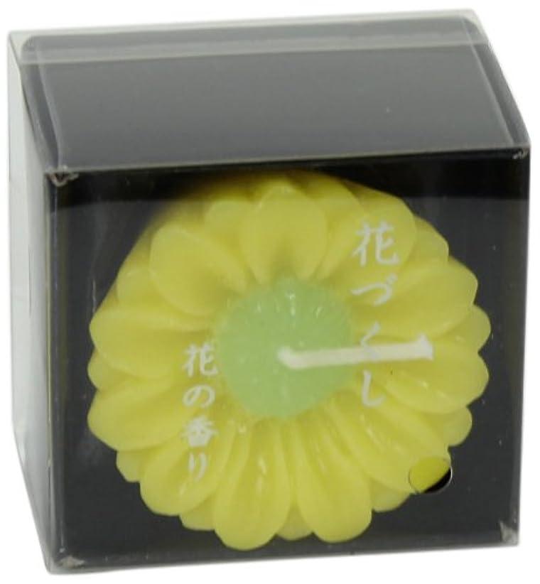 髄しばしば活性化する花づくし 「 菊(11月) 」