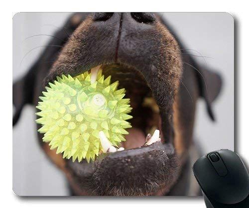 Benutzerdefinierte Mauspad, Puppy Thick Mousepad, Hund Rottweiler Kinder Ball Nahaufnahme Zähne Spielzeug, Hunde Gaming Mausmatte