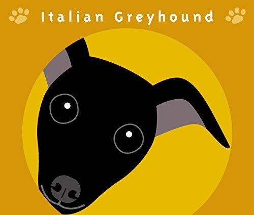 見つめる イタリアン グレー ハウンド ブラック [シール] 犬 ステッカー オレンジバック MK-2