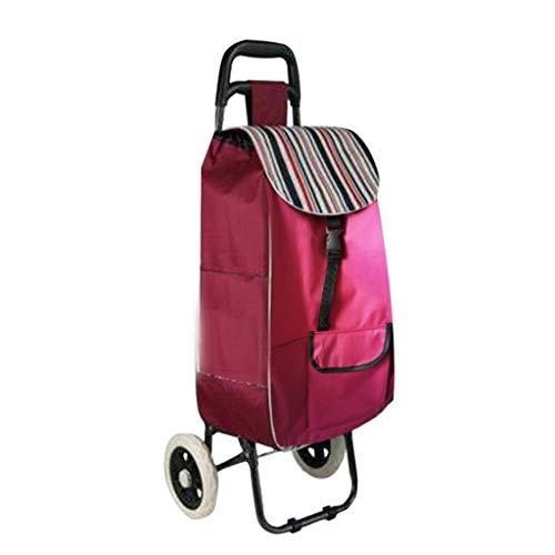 Chariot Chariot Rose 2 Roues Chariot en Métal Commercial Portable Pliable for Les Personnes Âgées Achats Chariots de courses (Color : Pink, Size : 43 * 22 * 60cm)