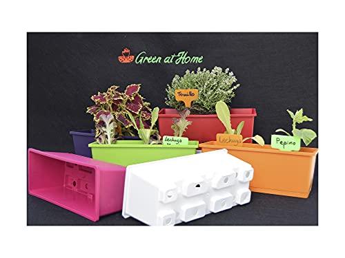 GREEN AT HOME: Kit de 6 Jardineras de Colores con Plato Integrado. para Plantas y Flores de Jardín, de Interior o Exterior, Hierbas Aromáticas. Naturaleza en tu Hogar