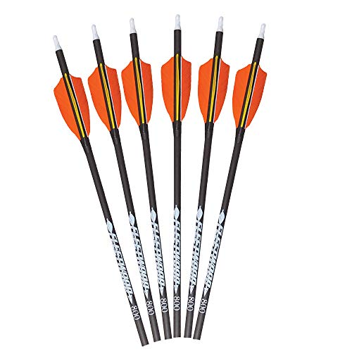 Fleetwood Arrows with Feathers (Orange, Spine 800)
