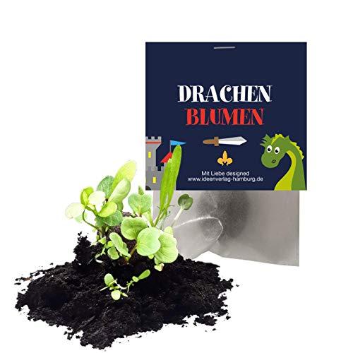 """10x \""""Drachen / Ritter\"""" Samenbomben als Mitgebsel zum Kindergeburtstag / Ritterparty / Seedbombs / Partytüten / Mitgebseltüten / Geschenktüten / Blumen / Give-aways / Geburtstag / Kinder / Saatkugeln"""