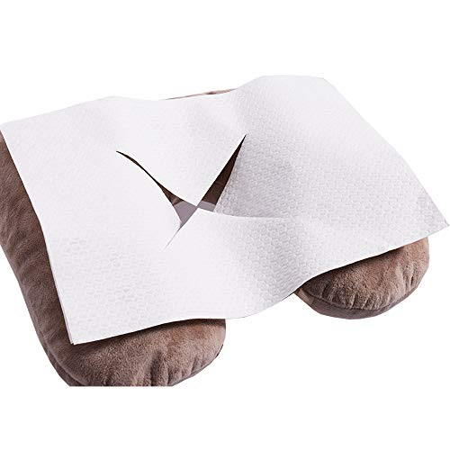 bfp Versand 2000 Stück (+200 Stück GRATIS!) Nasenschlitztücher Hygieneauflagen, 30 x 21 cm