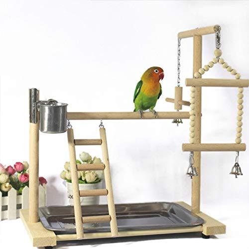 Kit gabbia per uccelli da volo Gabbia per uccelli I pappagalli suona tand tand persico con ladder feeder giocattoli uccello legno parco giochi pappagalli pappagalli alimentazione tazza battente appeso