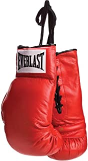 Everlast Vinyl Pair of Red Boxing Gloves - Great for Autographs