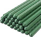 KULTIVERI Tutor Varilla para Plantas de Acero Recubierto de plástico - Soportes para tomateras y Plantas en macetas. (Paquete 20 Unidades) (120 cm (16 mm diámetro))