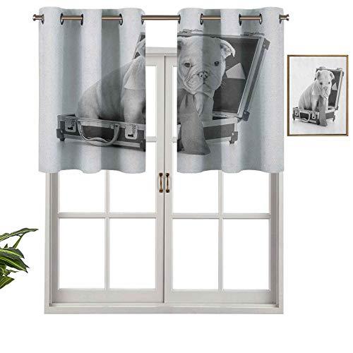 Hiiiman Cortina corta con ojales para ventana, diseño de cachorro sentado en el interior de un portafolio con imagen de escala de grises, juego de 2, 137 x 60 cm para baño y cocina