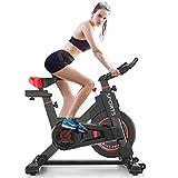 Delfy Stationary Exercise Bike, Indoor Cycling Spinning Bike with Adjustable Resistance, Bidirectional Flywheel