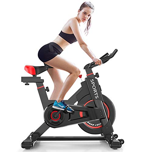 Delfy Stationary Exercise Bike, Indoor Cycling Spinning Bike with Adjustable Resistance, Bidirectional Flywheel, LCD Monitor, Silent Belt Driven Fitness Workout Equipment for Home Gym Cardio