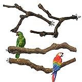Allazone 4 Pz Perca de Pájaro, Pájaro de Madera...