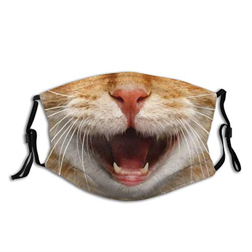 Funny Cat With Open Mouth Face Mask With Filter Pocket Washable Reusable Face Bandanas Balaclava With 2 Pcs Filters