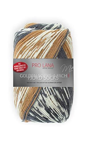 Unbekannt Pro Lana Fjord Socks 4-fädig Color 187 braun grau, Sockenwolle Norwegermuster musterbildend, 278477