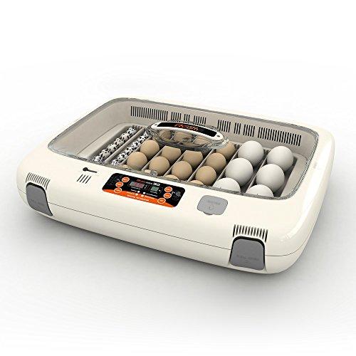 Broodmachine RCOM 50 MAX