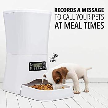 Sailnovo Distributeur Automatique de Nourriture Distributeur de Croquettes Gamelle Enregistrement 4 Repas pour Chats et Chiens (Moyen, Petit) (Distributeur/ 7L, Blanc)