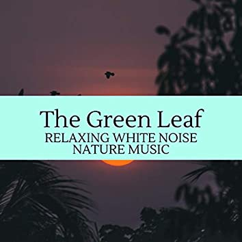 The Green Leaf - Relaxing White Noise Nature Music