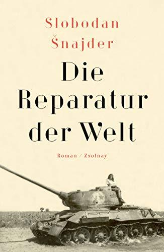 Die Reparatur der Welt: Roman