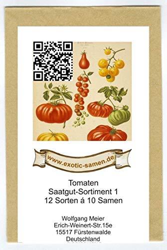 Samen - Saatgutsortiment 1 - Set - Mix - Mischung - historische Tomatensorten - 12 Sorten á 10 Samen