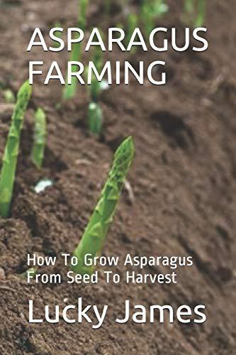 ASPARAGUS FARMING: How To Grow Asparagus From Seed To Harvest