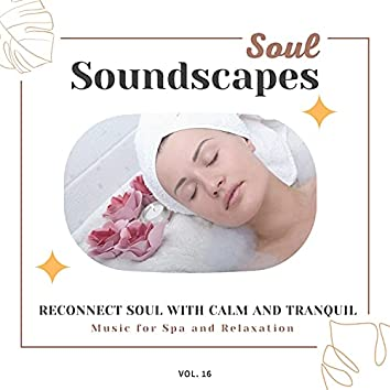 Soul Soundscapes, V16 - Reconnect Soul With Calm And Tranquil Music For Spa And Relaxation