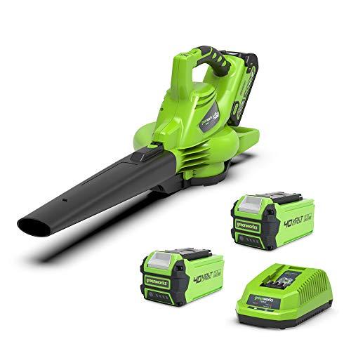Greenworks Tools 01-0000024227UC GD40BVK2X 24227UC 40 V Laubgebläse und Sauger inklusive 2 Akkus 2Ah und Ladegerät, Grün, Schwarz, Grau, Laubbläser