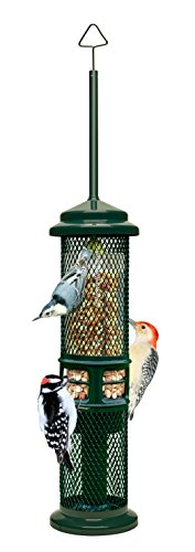 Squirrel Buster Peanut+ Squirrel-proof Bird Feeder w/Woodpecker Friendly Tail Prop, holds 1.3 pounds...