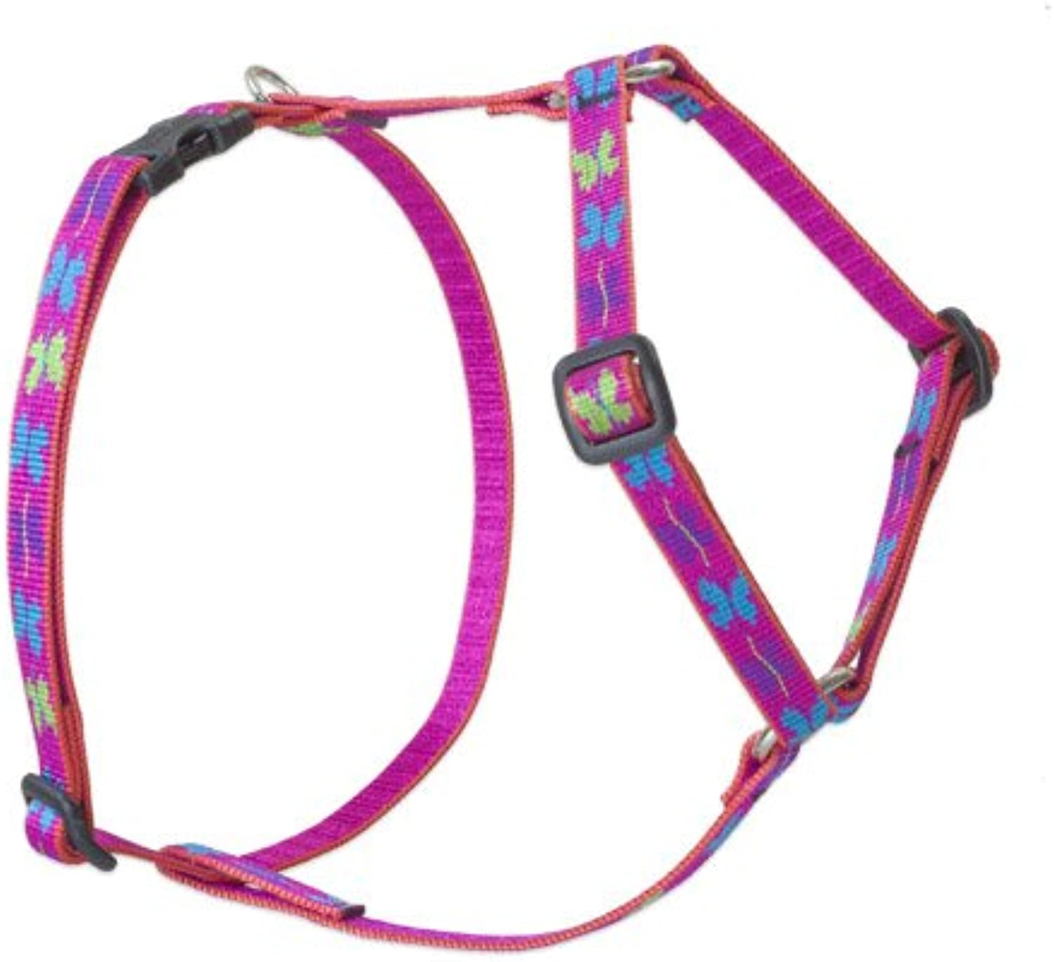 Lupine 1 2Inch Wing It Roman Dog Harness, 9Inch to 14Inch Girth