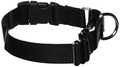 "PetSafe Martingale Collar with Quick Snap Buckle, 1"" Medium, Black"