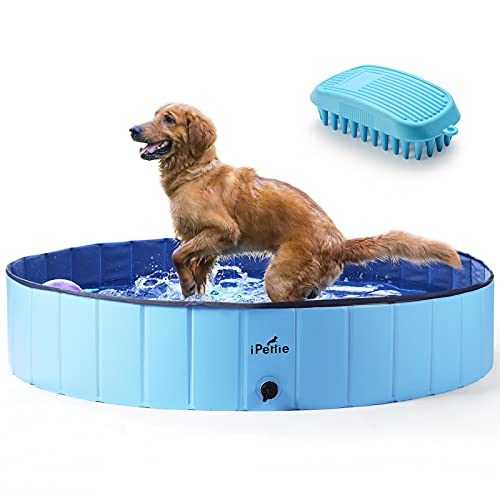 """iPettie Foldable Dog Pool, Collapsible Dog Pool, Dog Swimming Pools for Large Dogs, Kiddie Pool for Dogs, Cats & Kids, Blue, 63"""" x 12"""""""