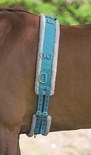 Shires Longiergurt mit Fleece-Polster, blau, Kaltblut / Warmblut extragroß