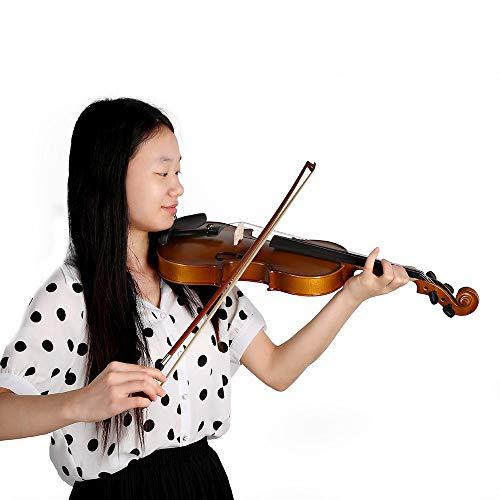 Raitron 4/4 Volledige Viool Fiddle Basswood Steel String Gesneden Muzikaal Instrument Voor Kinderen Beginners Cirkel Stijl Bow - Quarkscm