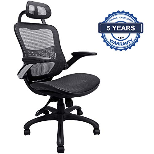 Ergonomic Office Chair, Weight Capacity Over 300Ibs Passed BIFMA,Breathable High Back Mesh Office...